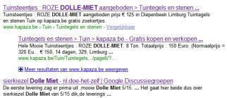 Spelfouten in Google